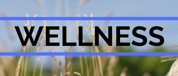 Wellness header with girl in field.